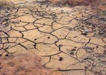 Pomoc suszowa: termin składania wniosków przedłużony do 15 listopada