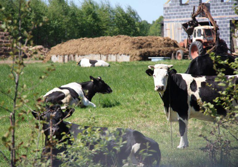 Pożyczki KOWR dla rolników