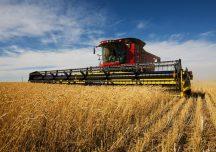 ARiMR: Pieniądze na rozwój usług rolniczych – termin naboru wniosków wydłużony