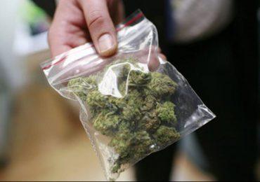 Jasło: Policjanci zabezpieczyli ponad kilogram marihuany