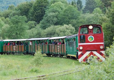 W lipcu i sierpniu Bieszczadzka Kolejka Leśna będzie kursować pięć razy dziennie.