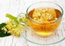 Lipa – właściwości, wskazania i przeciwwskazania herbaty z lipy