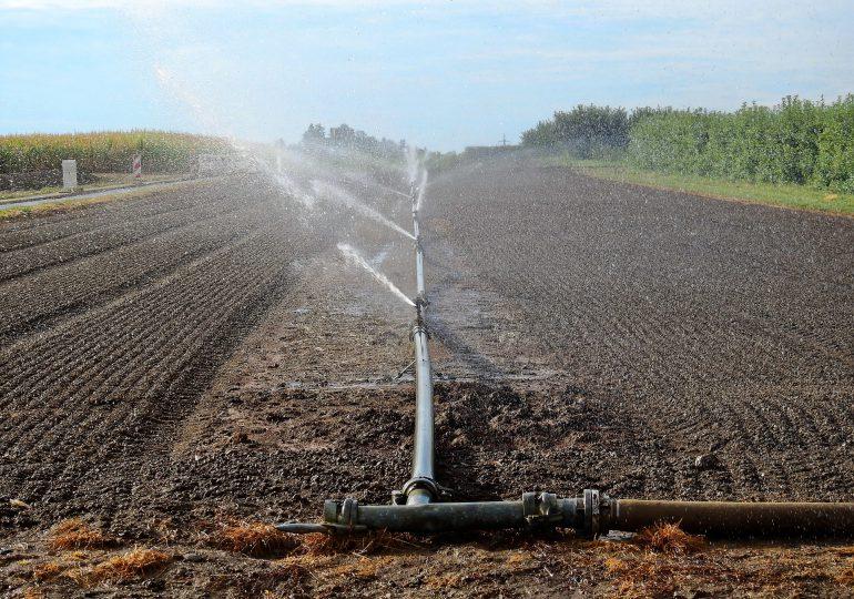 Zabezpiecz gospodarstwo przed suszą, złóż wniosek o dotację