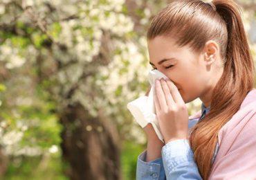 Porady: Ciężki czas dla alergików
