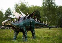 Kolbuszowa: Brzezóvka największy park na Podkarpaciu