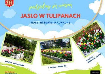 Jasło: Ogłoszenie wyników konkursu fotograficznego Jasło w tulipanach- podzielmy się wiosną!