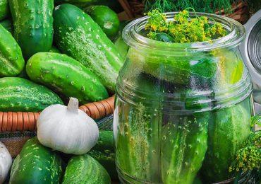 Kulinaria: Zobacz jak wygląda sprawdzony i niezawodny przepis naogórki małosolne