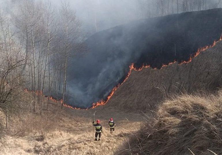 Polska: Współpraca ARiMR i Państwowej Straży Pożarnej