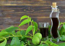 Porady: Orzechówka – lekarstwo z zielonych orzechów