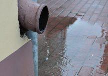 Gospodarka: Dotacja 5 tyś złotych na przydomowe instalacje zatrzymujące deszczówkę