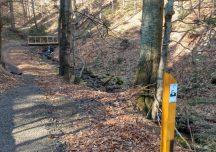 Lesko: Nowa atrakcja dla miłośników leśnych wycieczek rowerowych w Bieszczadach