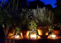 Porady: Rośliny, które pachną wieczorem najpiękniej, najmocniej i najdłużej
