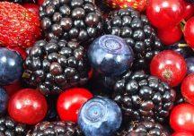 Porady: Owoców z tych krzewów lepiej nie jedz prosto z krzaka
