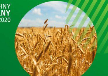 Polska: 1 września dziś rusza Powszechny Spis Rolny 2020.