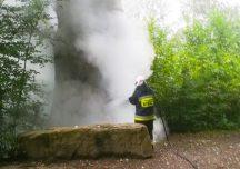 Krosno: Pożar ponad 450-letniego dębu Wincenty