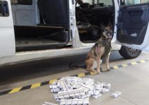 Lubaczów: Przemyt papierosów udaremniony dzięki psom