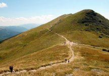Ustrzyki Dolne: Czasowe zamknięcie szlaków w Bieszczadach