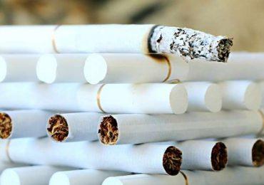 Prawo: Psy przeszkodziły w  przemycie papierosów