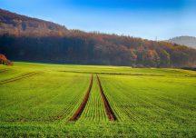 Rolnictwo: Już tylko kilka dni mają rolnicy aby wziąć udział w Powszechnym Spisie Rolnym