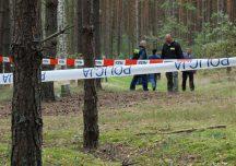 Ropczyce: W lesie odnaleziono zwęglone ludzkie szczątki.