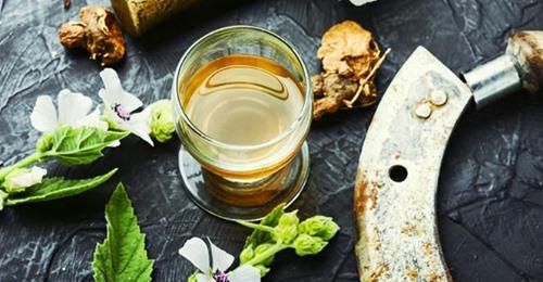 Zdrowie: Napar z prawoślazu - na co pomaga?