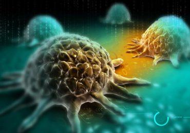 Zdrowie: Lekarze nawołują do badanie się w kierunku nowotworów