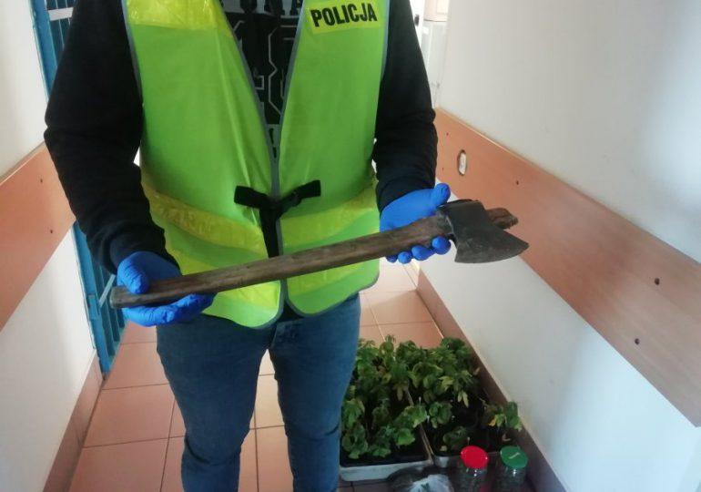 Brzozów: Groził matce siekierą. Podczas interwencji Policja odkryła plantację narkotyków.