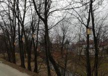 """Krosno: Projekt obywatelski """"100 budek dla ptasiej dzielnicy"""""""