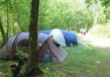 Lesko: Biwak legalnie i za darmo w bieszczadzkich lasach