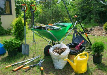 Porady: Kwiecień w ogrodzie- czym musimy się zając w tym miesiącu ?
