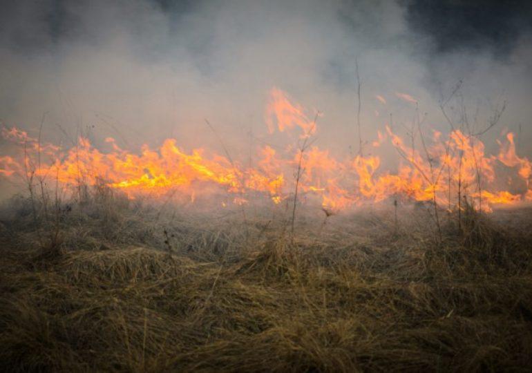 Rolnictwo: Apel do mieszkańców o niewypalanie traw!