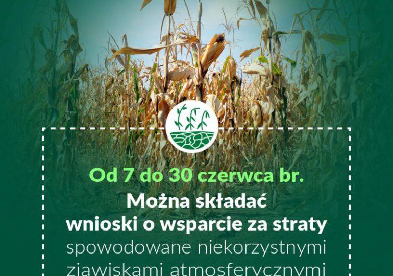 Rolnictwo: Wsparcie za straty spowodowane niekorzystnymi zjawiskami atmosferycznymi.