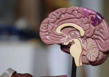 Zdrowie: Co to jest mgła mózgowa? Definicja, objawy i przyczyny.