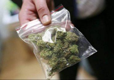 Nisko: Podczas domowej interencji policji odnaleziono narkotyki.