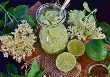 Zdrowie: Syrop z kwiatu czarnego bzu na przeziębienie lub kaszel