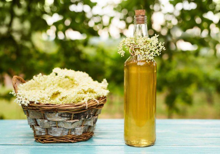 Kulinaria: Syrop z kwiatu czarnego bzu