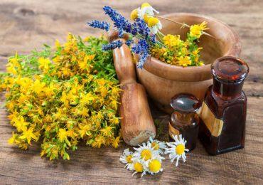 Zdrowie: Czy zioła mogą być szkodliwe ?