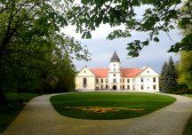 Tarnobrzeg: Kolekcja rodu Tarnowskich wraca do zamku w Dzikowie