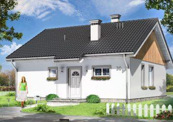 Biznes: Perspektywy dla  domów do 70 metrów