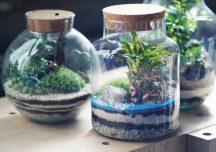 Rzeszów: Bezpłatne warsztaty florystyczne i makramowe w Rzeszowskim Domu Kultury